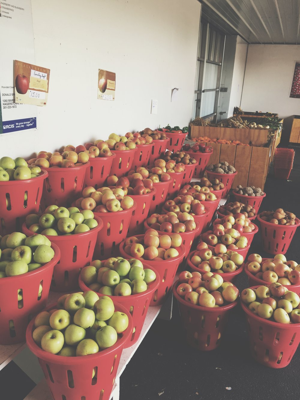 - We also have plenty of apples