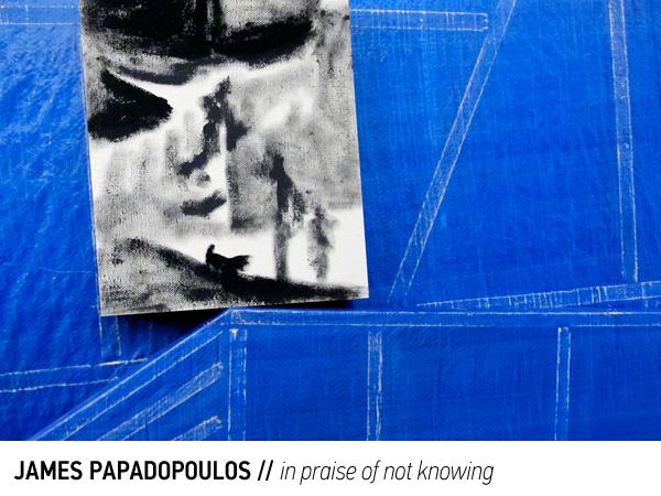 papadopoulos.inpraiseofnotknowing.jpg