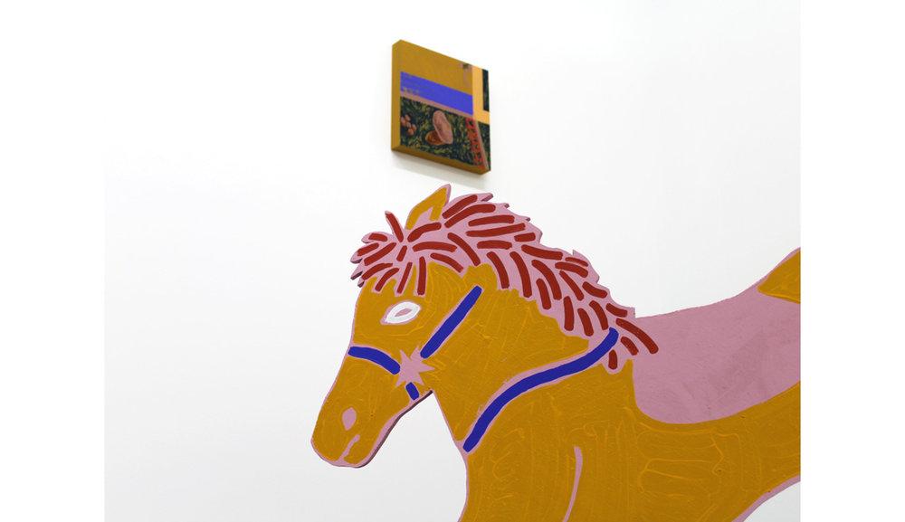web.AMcL17.install.pony.1000.jpg
