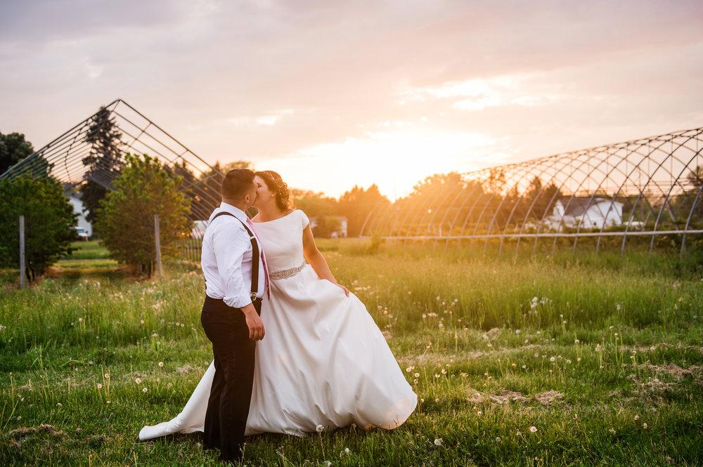 JILLSTUDIO_Blue_Barn_Cidery_Rochester_Wedding_Rochester_NY_Photographer_DSC_9062.jpg