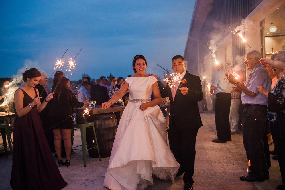 JILLSTUDIO_Blue_Barn_Cidery_Rochester_Wedding_Rochester_NY_Photographer_DSC_9155.jpg
