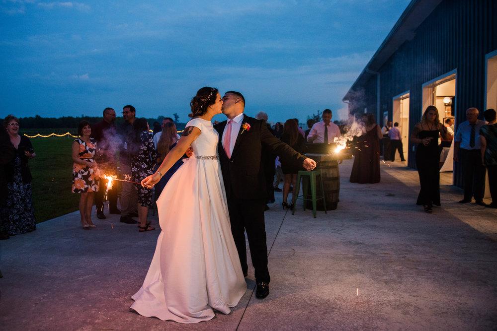 JILLSTUDIO_Blue_Barn_Cidery_Rochester_Wedding_Rochester_NY_Photographer_DSC_9165.jpg
