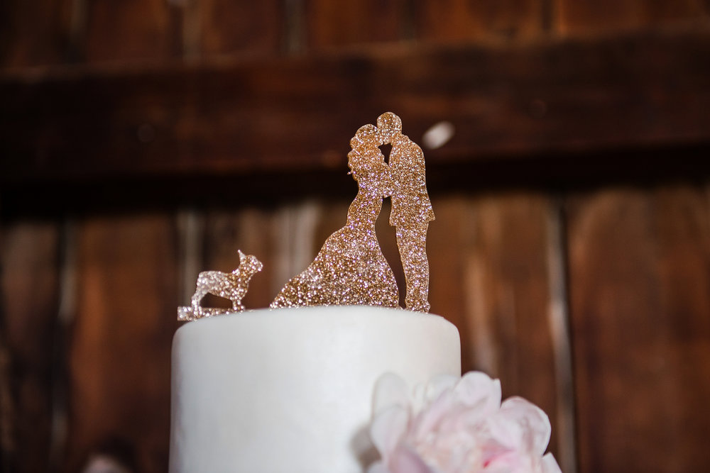 JILLSTUDIO_Avon_Century_Barn_Rochester_Wedding_Rochester_NY_Photographer_DSC_0374.jpg