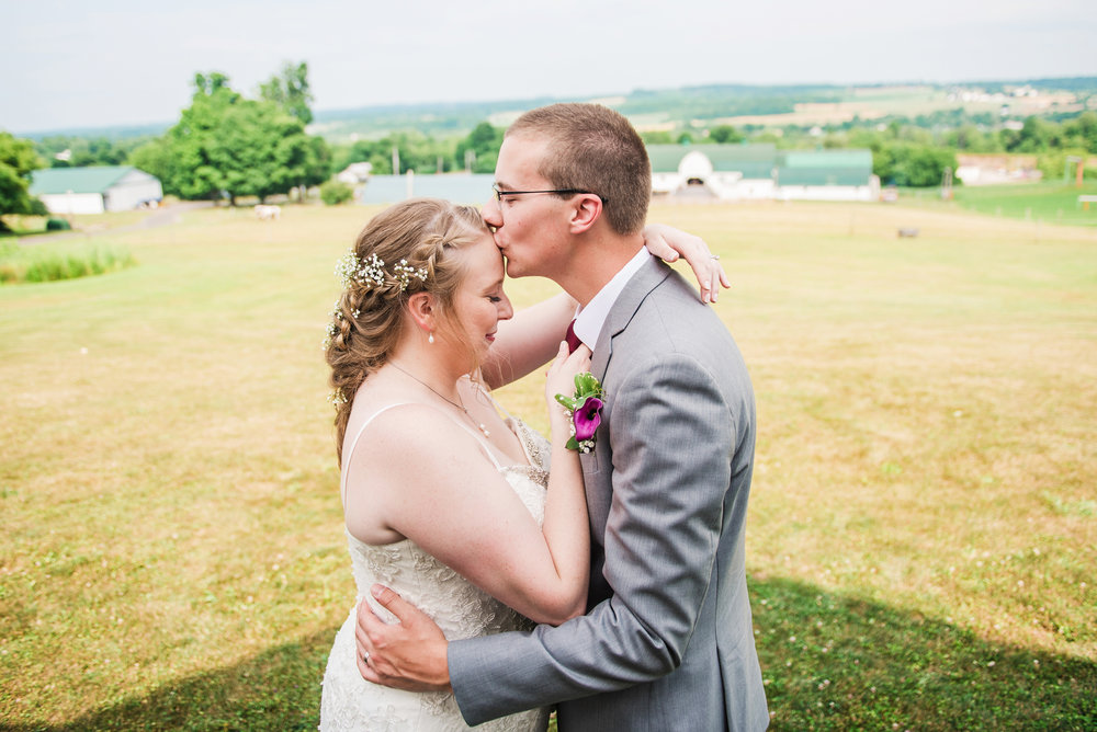 JILLSTUDIO_MKJ_Farms_Central_NY_Wedding_Rochester_NY_Photographer_DSC_8509.jpg