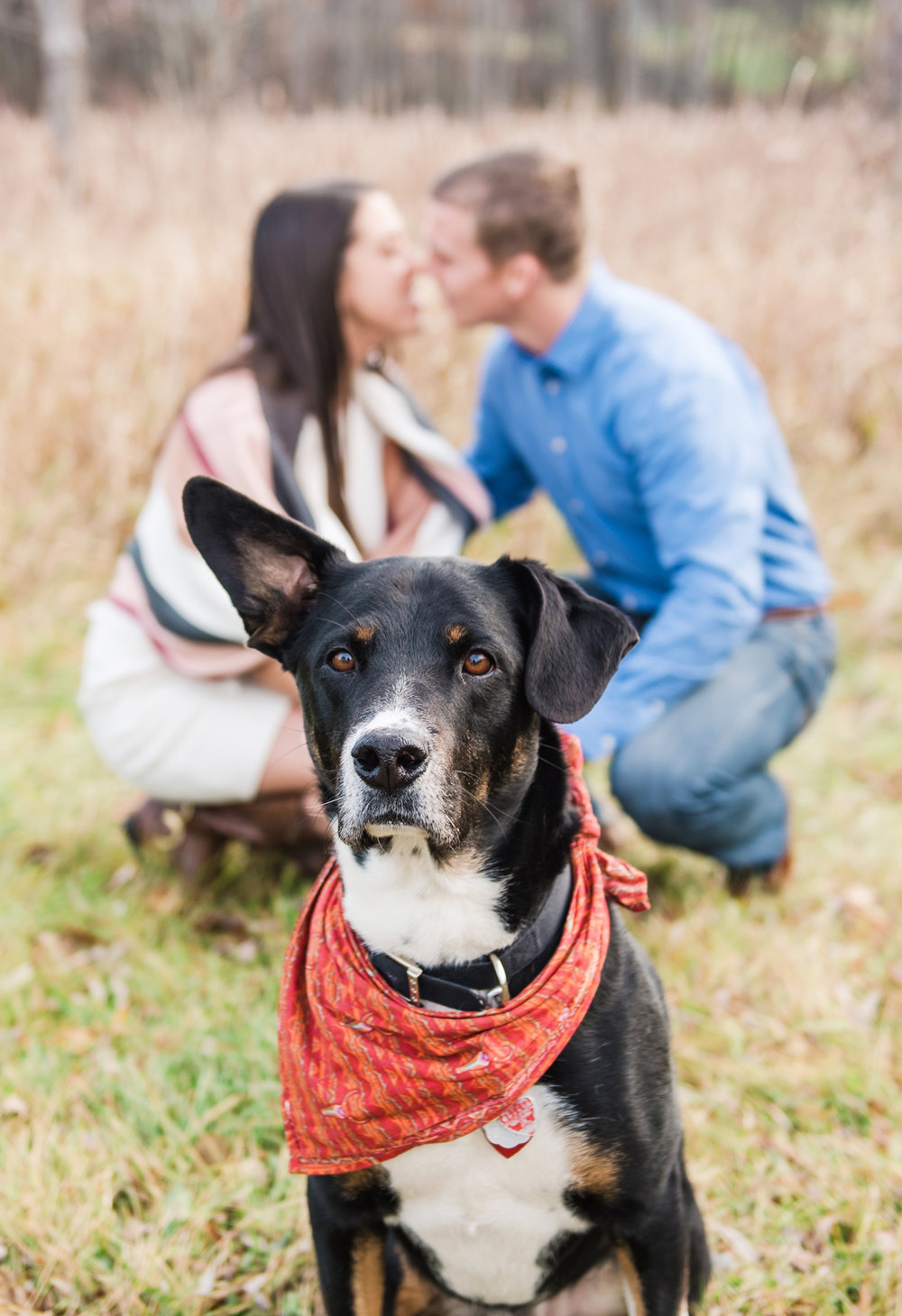 Mendon_Ponds_Park_Rochester_Engagement_Session_JILL_STUDIO_Rochester_NY_Photographer_DSC_0228.jpg