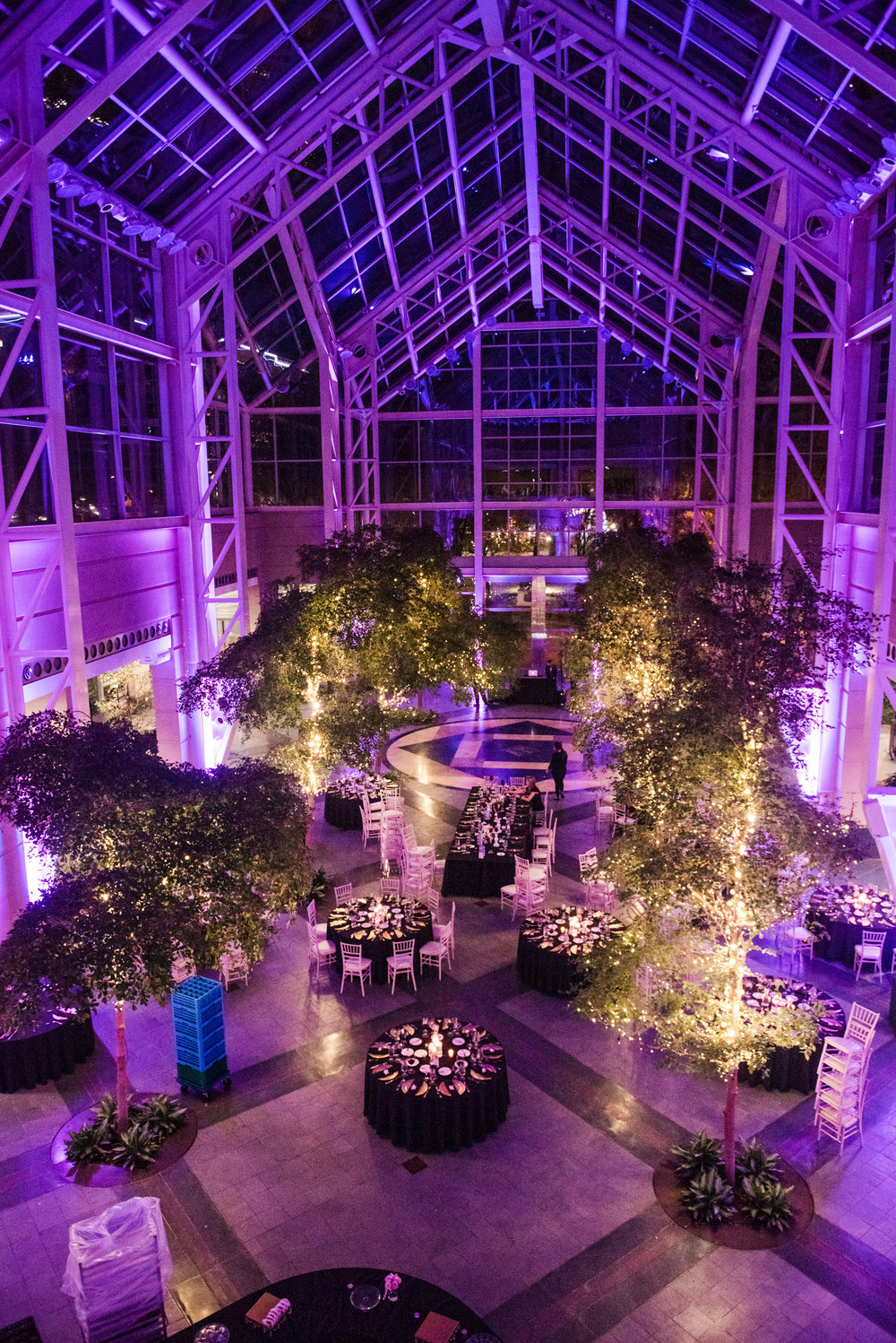 Wintergarden_by_Monroes_Rochester_Wedding_JILL_STUDIO_Rochester_NY_Photographer_190528.jpg