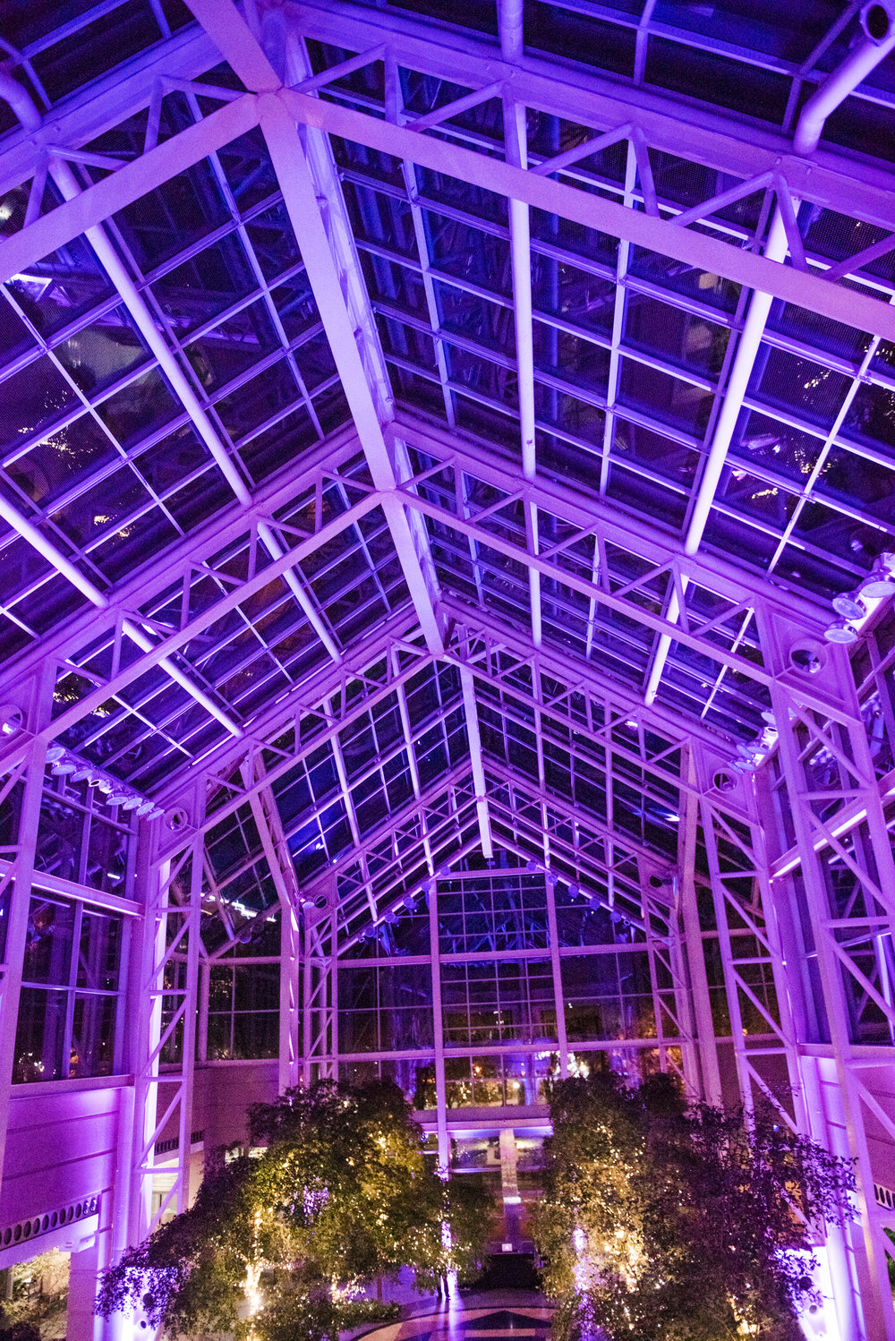 Wintergarden_by_Monroes_Rochester_Wedding_JILL_STUDIO_Rochester_NY_Photographer_190538.jpg