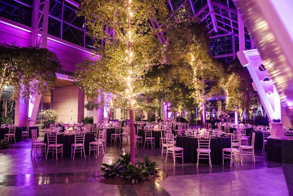 Wintergarden_by_Monroes_Rochester_Wedding_JILL_STUDIO_Rochester_NY_Photographer_192506.jpg
