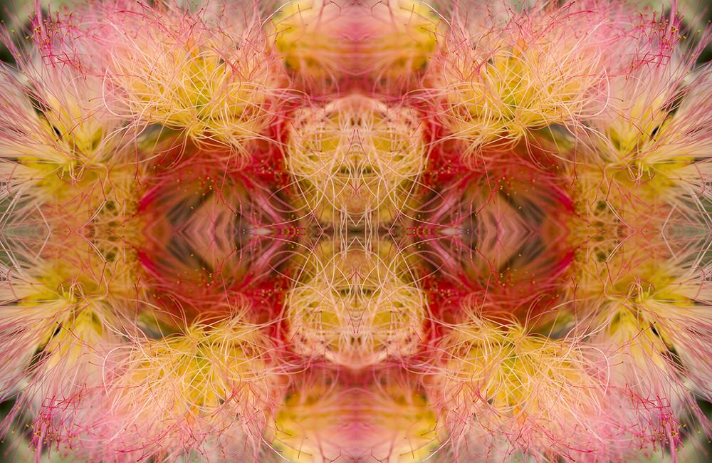 © FLOWERS COMPOSITION No.12