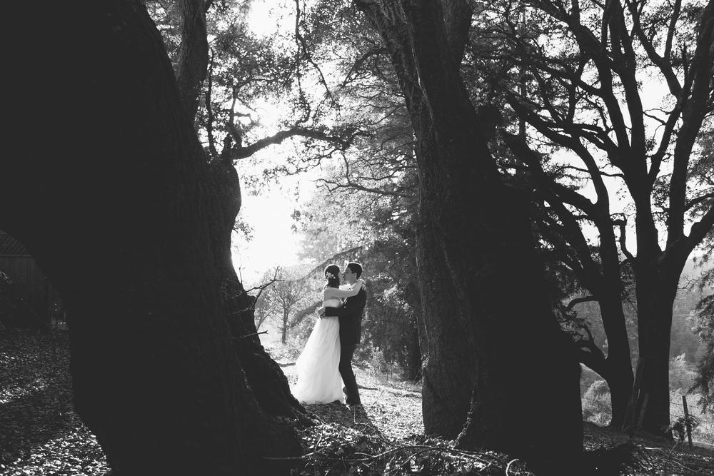 Wedding_Emma&Alex_20140913_11408.jpg