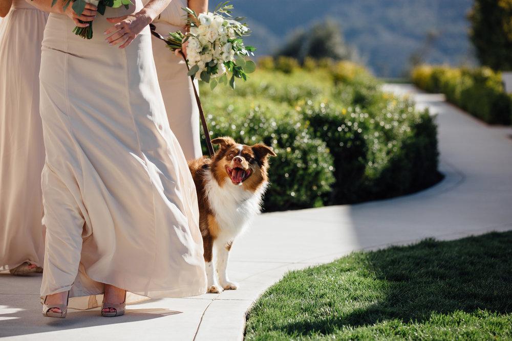 Wedding_K&W_Blog__19.jpg