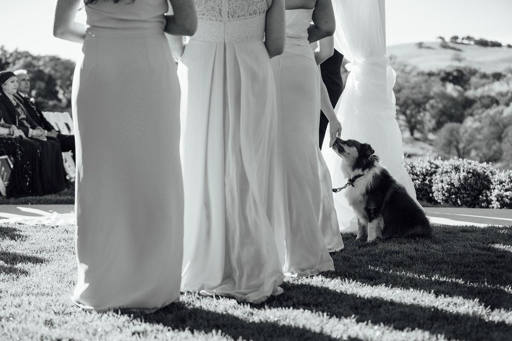 Wedding_K&W_Blog__26.jpg