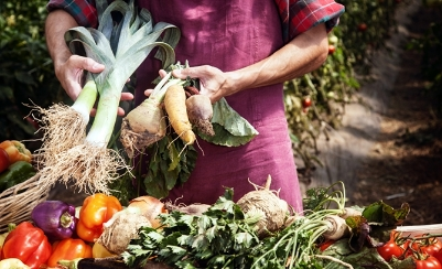 Four reasons to incorporate Westport Farmers' Market into your Holiday Shopping Routine by Lindsey Sullivan Westport Magazine, November 2014