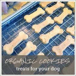 pauls-organic-cookies.jpg