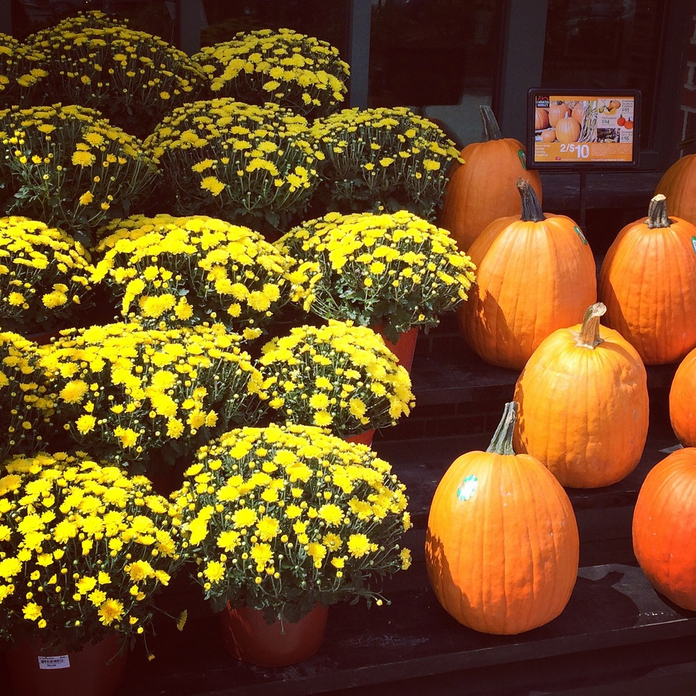 I'm so excited for Fall!