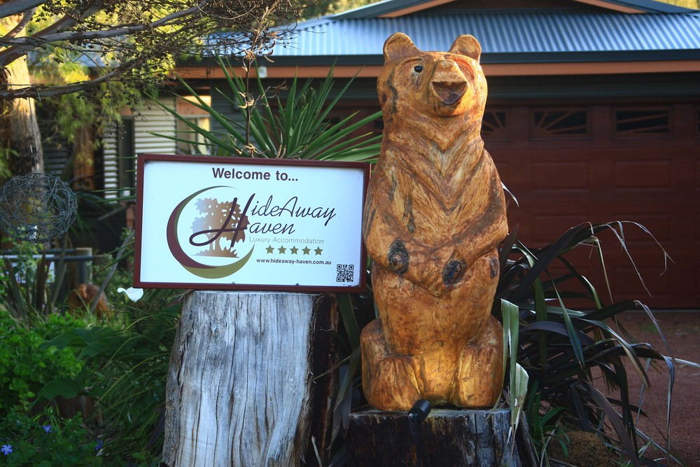 Heidi Bear Welcome to HideAway Haven lo res.jpg
