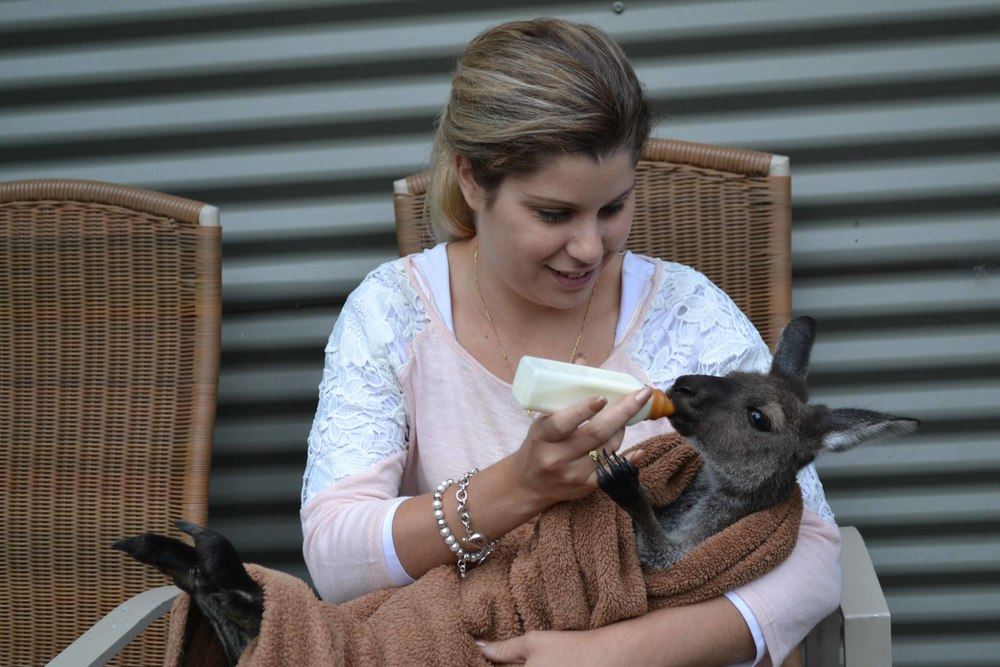 Sammi Jo Rescued Joey at HideAway Haven