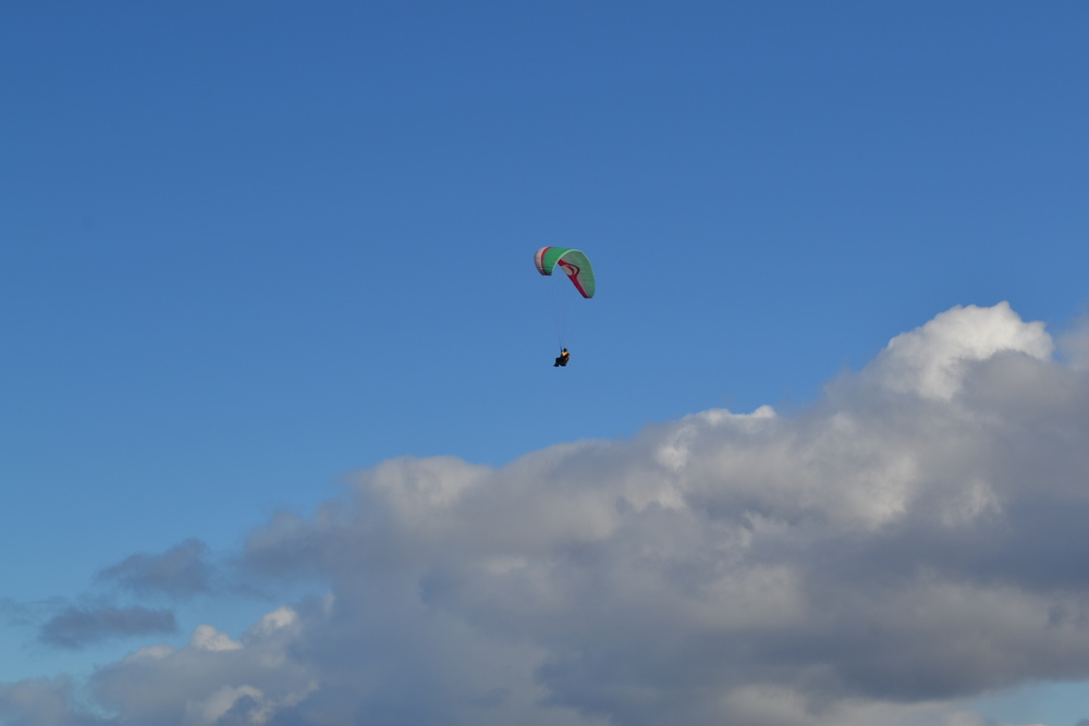 Paraglding in the Albany Region
