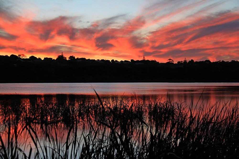 Image Credit: Brad Donaldson via  Albany Region