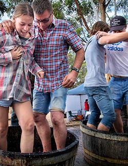 Porongurup Wine Festival.jpg