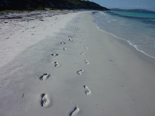 Copy+(2)+of+footprints+in+the+sand.jpg