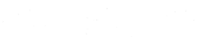 nyconnection_logo_white