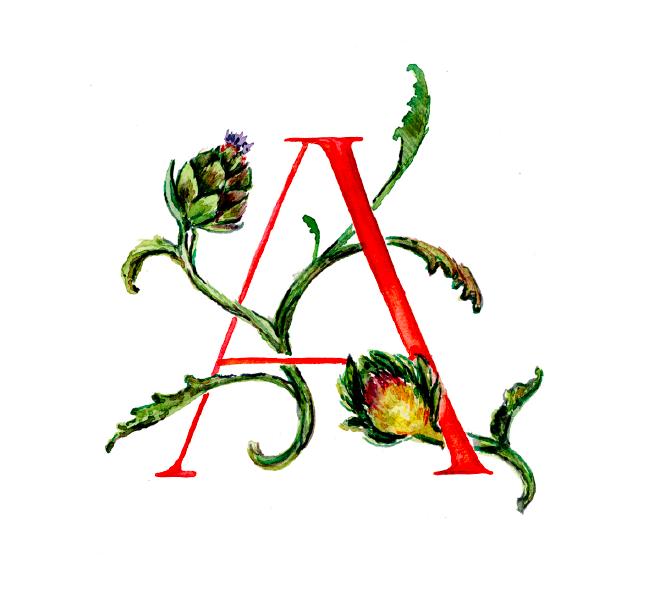 A_artichoke.png