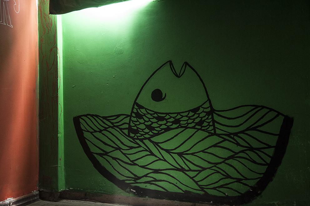 O peixe com sede de luz, na sala de projeção (clique para aumentar).