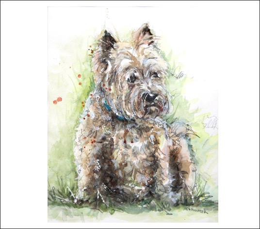 """Benny"" 11x14 watercolour on paper   This was my parents dog Benny. He was the second Cairn terrier they had and our dog through all my teenage years. Cairns are awesome because they have such big personality. Benny lived a long great life and passed away at 14."