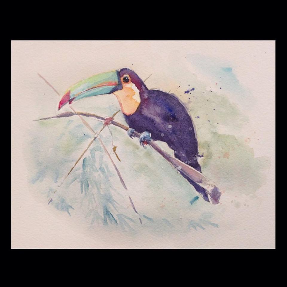 """Toucan for Mark"" 11x14 watercolour on paper  A Vancouver philanthropist asked me to paint this Toucan for him after he returned from South America."