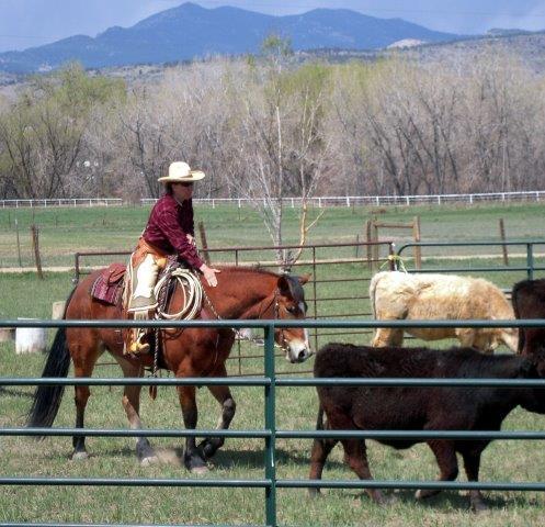 Cowclinicapril2012 150-2.jpg
