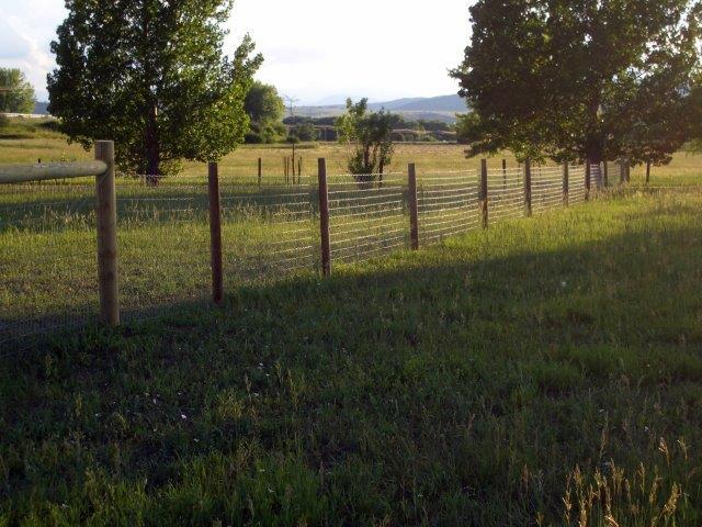 fence09 014-1.jpg