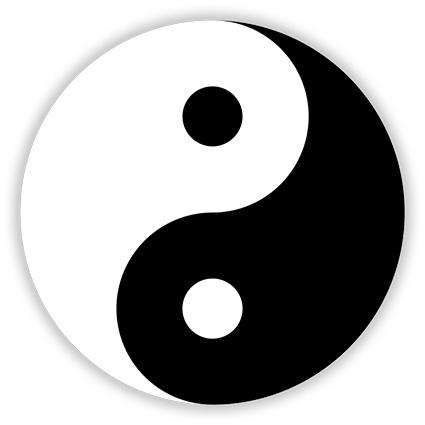 The yin - yang symbol