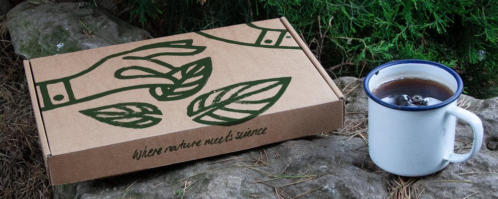 Wildmeds Mailbox
