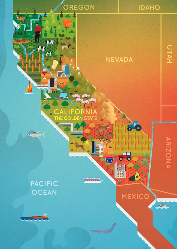 California Map — Meghan Spurlock