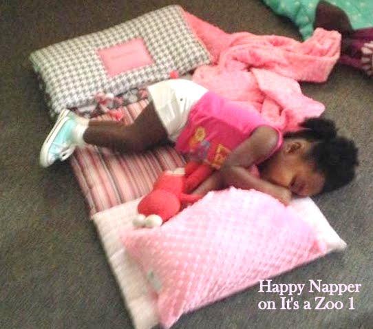 happy napper sleeping on zoo..jpg