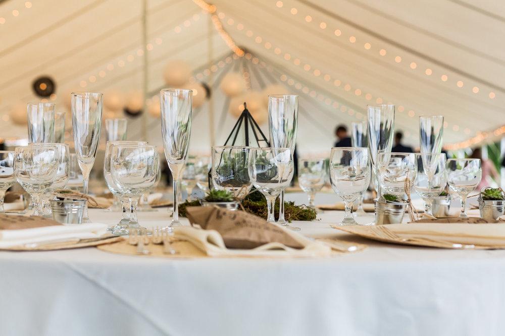 StephNick-Wedding-0302-lowres-CT-Vineyard-Wedding.jpg