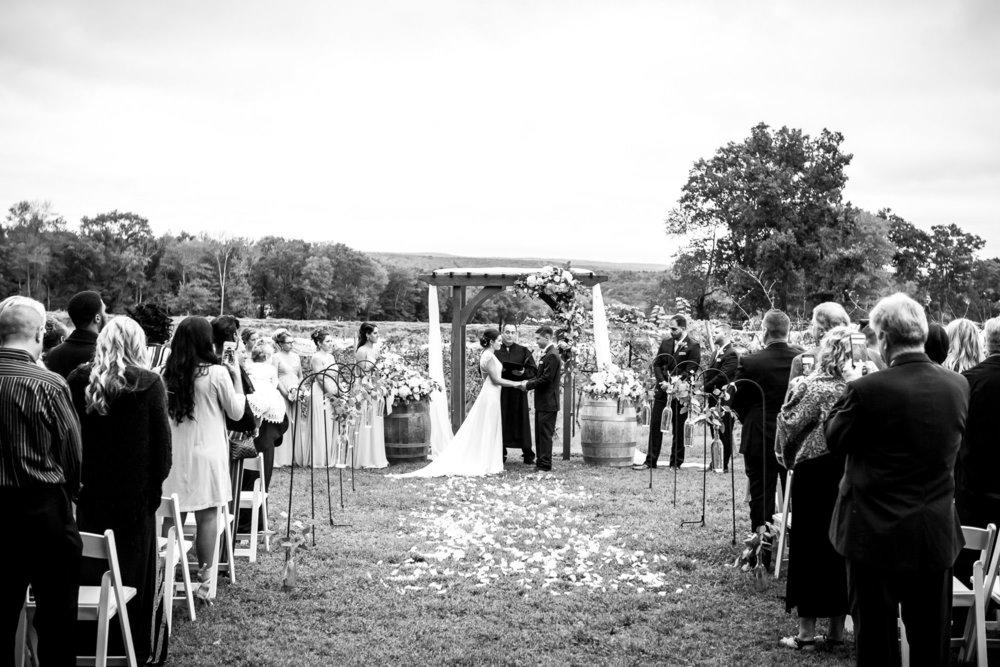 StephNick-Wedding-0435-lowres-CT-Vineyard-Wedding-2.jpg