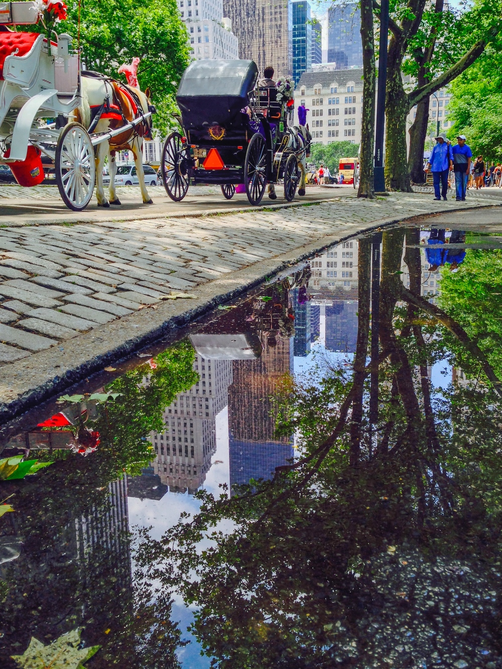 CENTRAL PARK REFLECTIONS : Here's another photo I snapped with my iPhone. What I like most about this shot, beside the boost in color I gave it, is that tops of the buildings are cut off but appear anyway in the puddle's reflection.