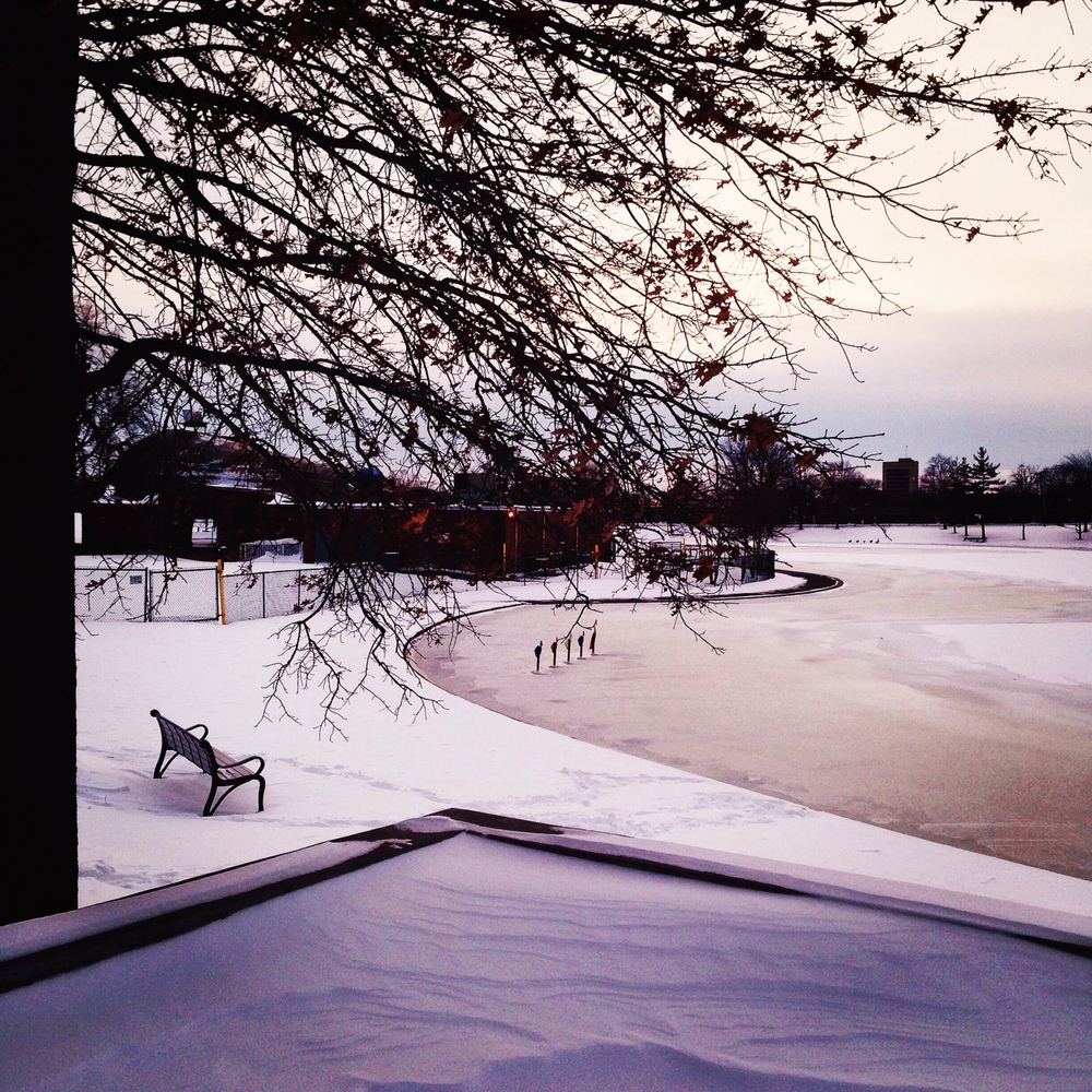 The Lake at Eisenhower Park following a snowfall. (Photo: Joseph Kellard)