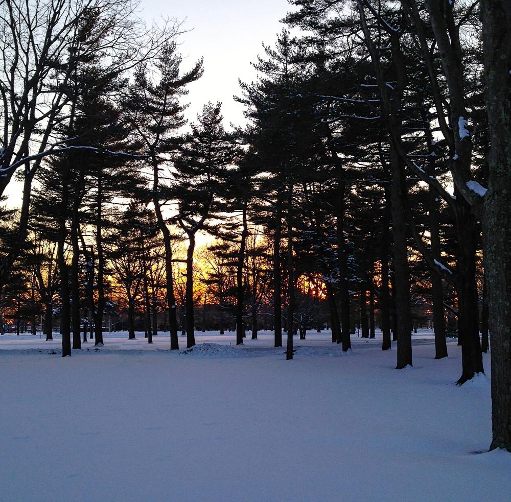 @ Eisenhower Park_Snow_Winter_2015-5.jpg