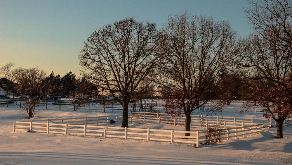 @ Eisenhower Park_Snow_Winter_2015-2.jpg