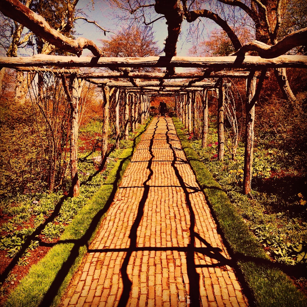 @_Old Westbury Gardens_(iPhone).JPG