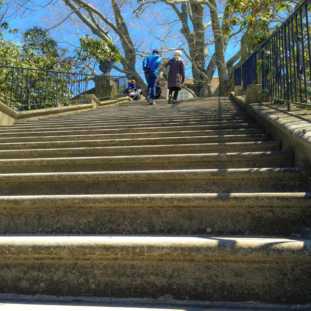 @_Old Westbury Gardens_steps.jpg