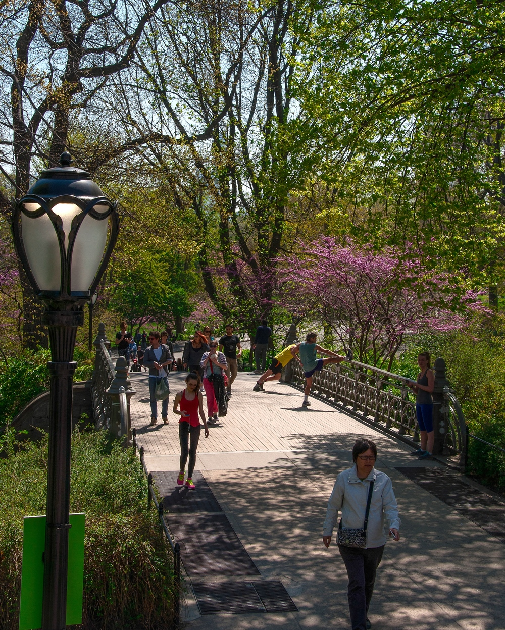 @-Central Park_bridge No 24.jpg