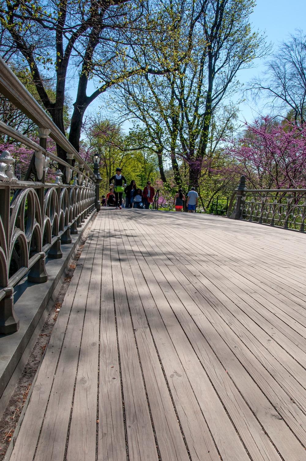 @-Central Park_Bridge No. 24[.jpg