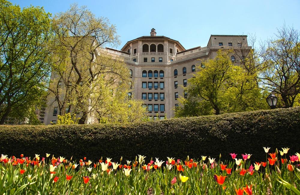 @ Central Park_Conservatory Garden__© 2015 Joseph Kellard-Kellardmedia.com.jpg