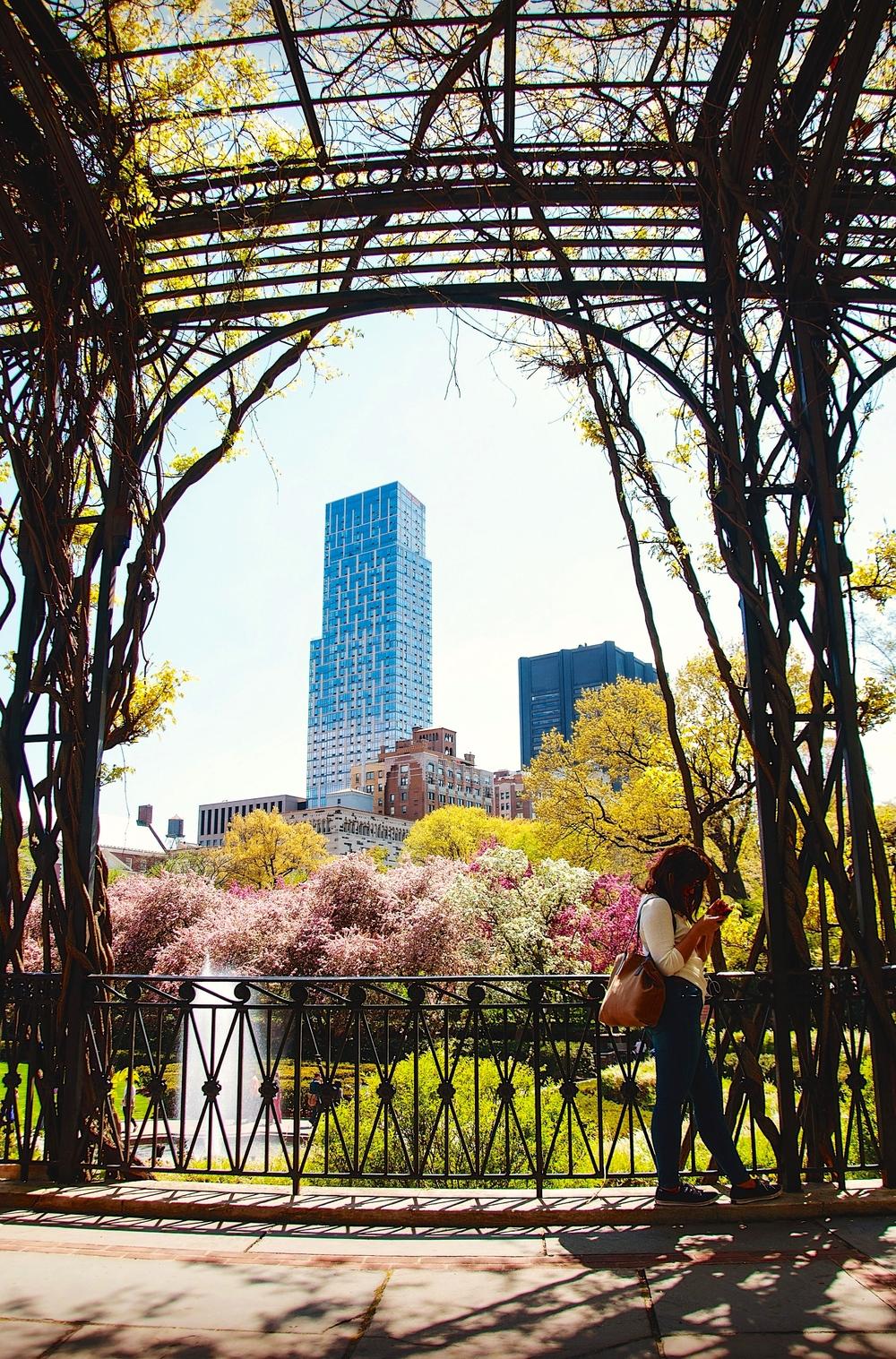 @ Central Park_Conservatory Garden_© 2015 Joseph Kellard-Kellardmedia.com..jpg