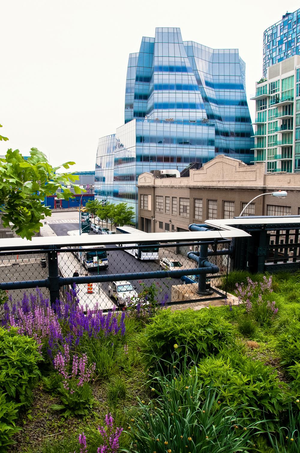 @ @ High Line.jpg