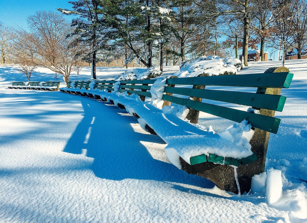 @ @ EISENhower Park_bench_snow_2.5.16_Photo © 2016 Joseph Kellard:kellardmedia.com .JPG